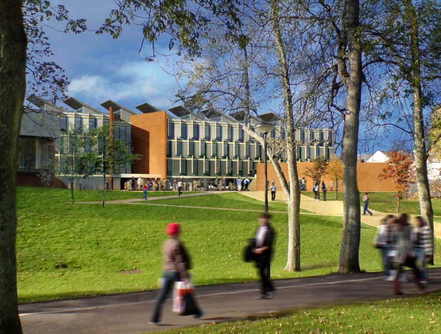 sussex university law and business