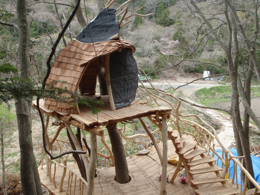 Matsushima tree house japanese project e architect for Architecture and design tree house