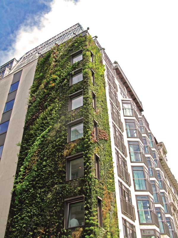 Westminster Sustainable Buildings E Architect