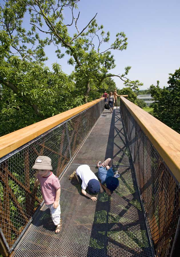 Over The Garden Walk: Kew Garden's Tree Top Walkway, London