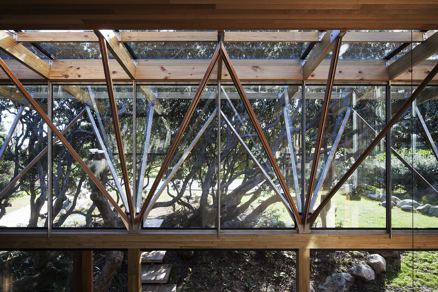 Under Pohutukawa New Zealand Property E Architect