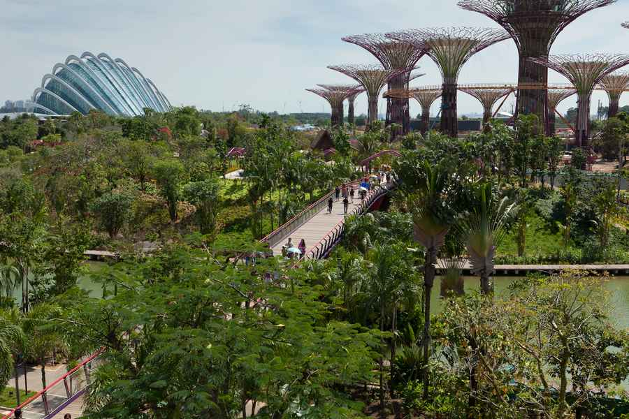 Gardens by the bay singapore supertrees e architect for Indoor gardening singapore