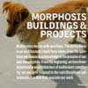 Morphosis Book