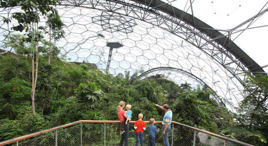 Eden Project Rainforest Aerial Walkway
