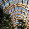 Winter Gardens Sheffield