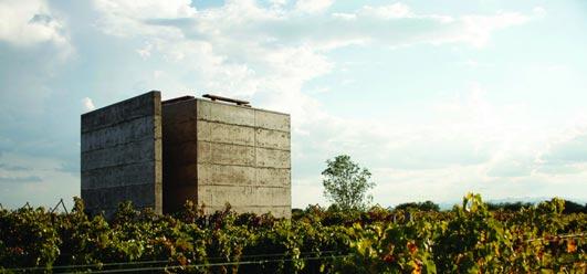 Cuna de Tierra Winery Building