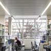 Oxford Molecular Pathology Institute