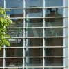 Active Glass Curtain Wall