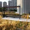 Nathan Phillips Square Podium Green Roof