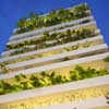 Stacking Green Ho Chi Minh city House Home Vietnamese Residence