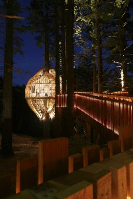 Yellow Treehouse Restaurant NZ
