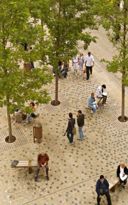 Bonn Square Oxford landscape architecture