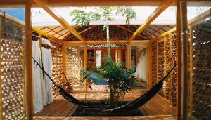 A Forest for a Moon Dazzler Costa Rica house