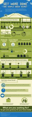 Artificial plants and trees in home & office