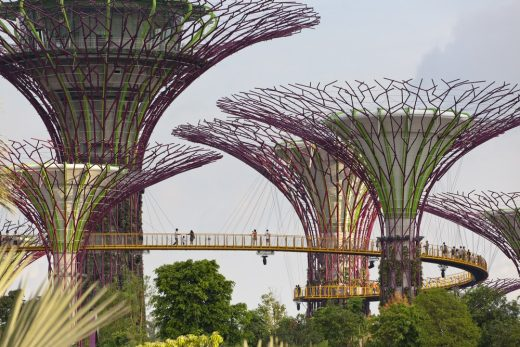 Supertree Groves Gardens by the Bay Singapore