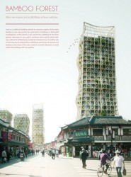 Bamboo Forest: Skyscrapers And Scaffoldings In Symbiosis.