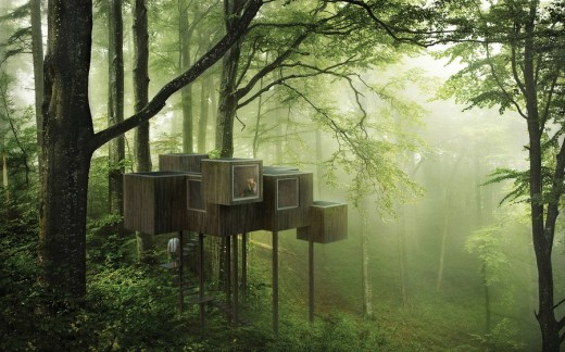 Triumph Architectural Treehouse Award 2014