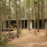 Residence in the Forest Argentina 7