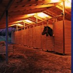 Horse Stable in Bío Bío