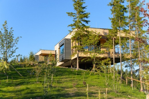 Deluxe Mountain Chalets - Austrian Houses