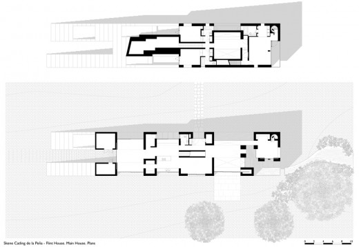 Flint House main plan