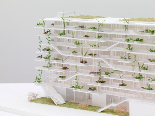 Offices with Terraces competition winner