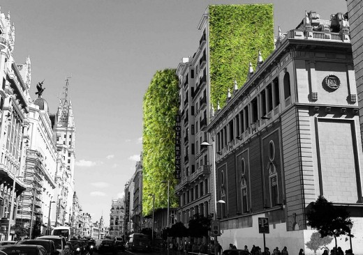Guidelines for a Greener City