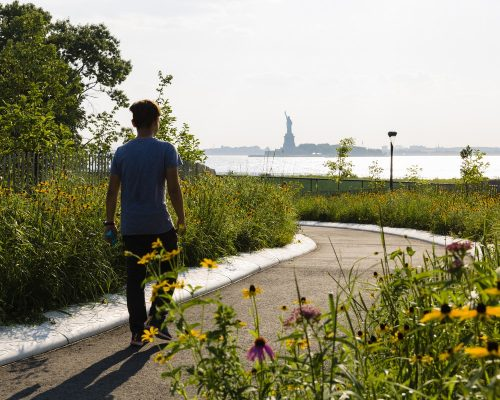 The Hills on Governors Island NY