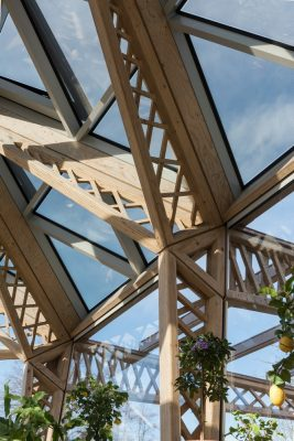 Maggie's Centre Manchester roof structure