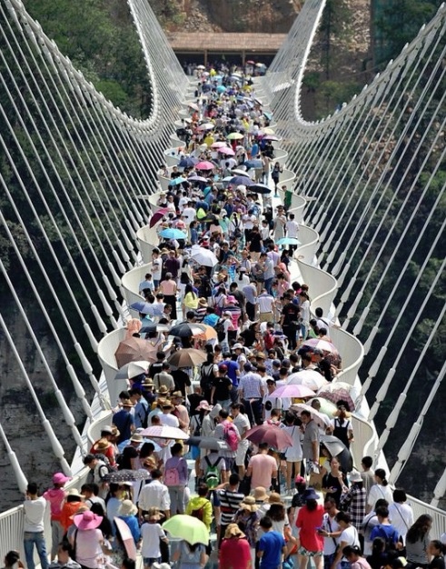 grand canyon tourists with Zhangjiajie National Forest Park Bridge on Tremendous 10 Walkways Of The World besides Things To Do In Dubai as well Trail Ridge Road as well How Many Visitors To Grand Canyon furthermore Parco Nazionale Forestale Di Zhangjiajie.