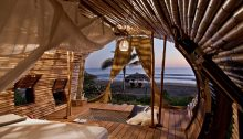 Treehouse Suite