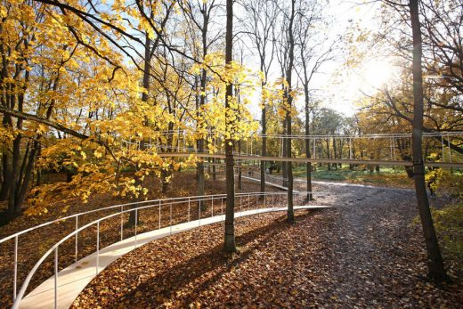 A Path in the Forest of Kadriorg