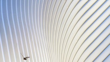 Architectural Photography of the Sacred Geometries Exhibition