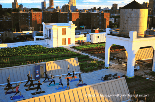 Brooklyn Grange Farm yoga