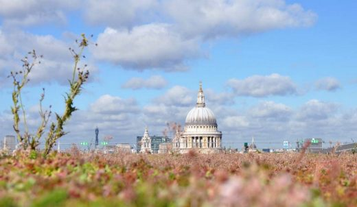 green roof in City of London