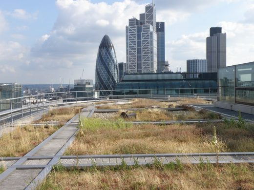 City of London green roof