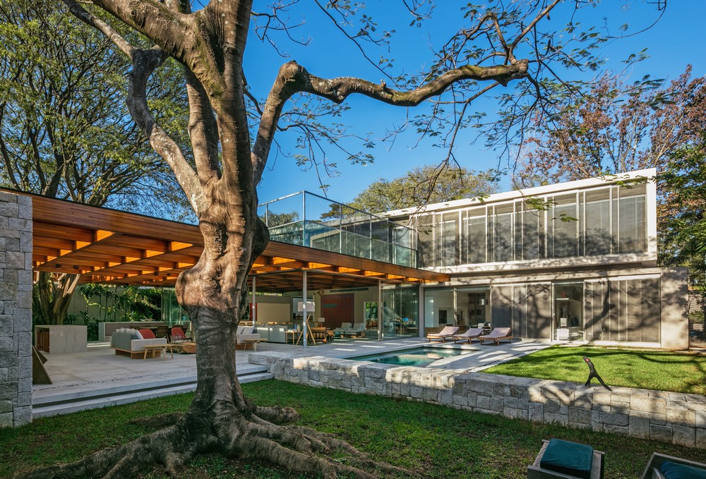 House built around a tree 1 e architect for Houses built in trees