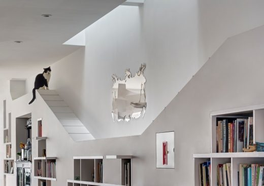 House for Booklovers and Cats