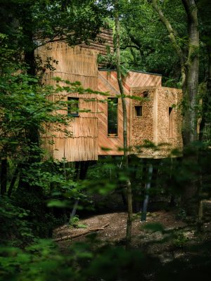 Woodsman's Treehouse West Dorset, England