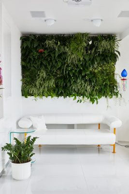 Margeza apartment in Budapest green wall