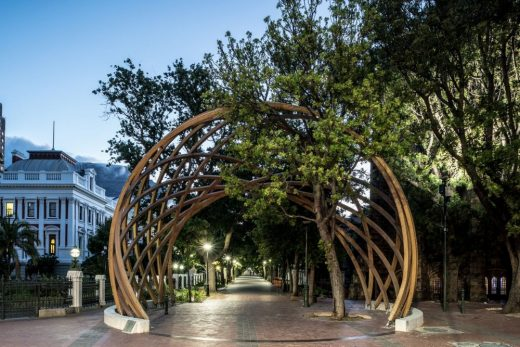 The Arch for Arch in Cape Town