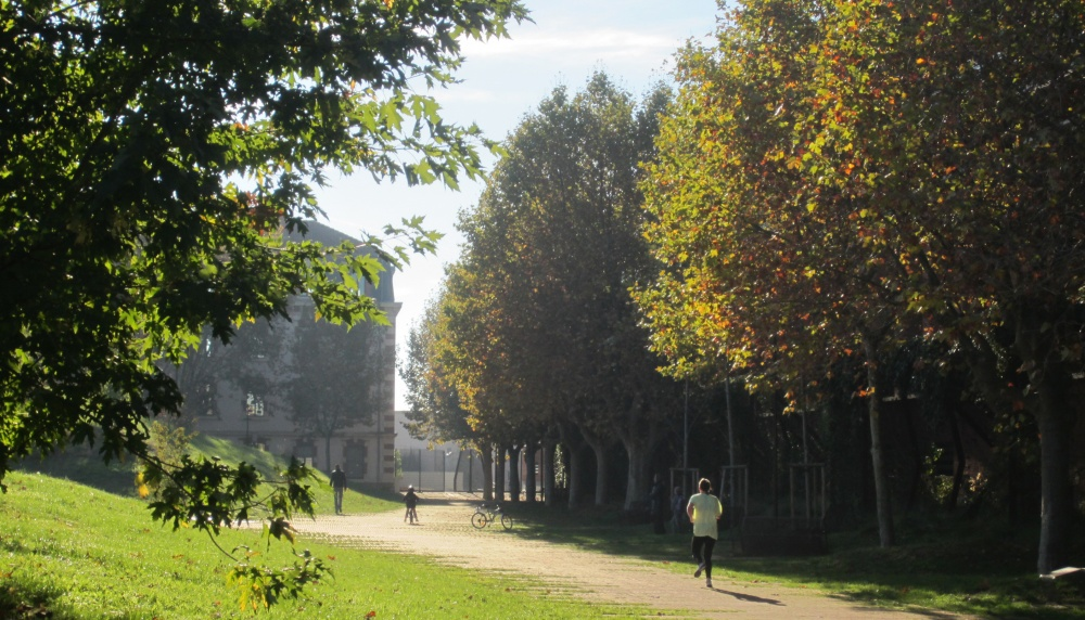 le jardin niel toulouse e architect