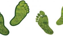 6 Tips to Reduce Your Commercial Properties Carbon Footprint