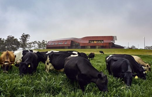 Bannister Downs Dairy Northcliffe