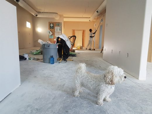 5 Renovation Tips That Every Homeowner Should Know