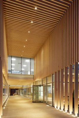 Davidson Reading Building by dn-a architects