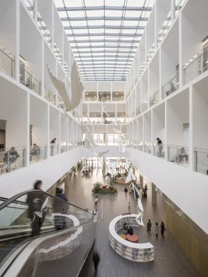 Ningbo New Library Building in China by schmidt hammer lassen architects