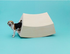 Architecture for Dogs at Japan House London