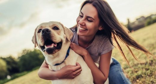 How The Endocannabinoid System In Us Makes You And Your Dogs The Same