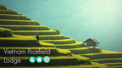 Vietnam Ricefield Lodge Design Competition